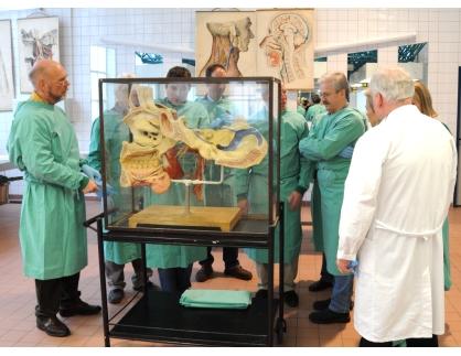 Erfreut Institut Für Anatomie Und Zellbiologie Bilder - Anatomie Von ...